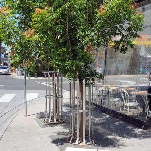Tree Guard - Flared