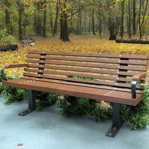 Heavy Duty park seat with armrests