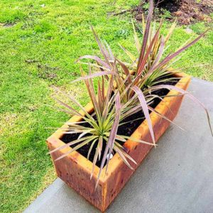 Hamilton rectangle self-wicking planter box