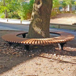 Tree surrounding bench